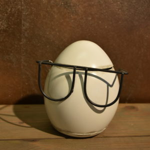 Dosenei mit Brille